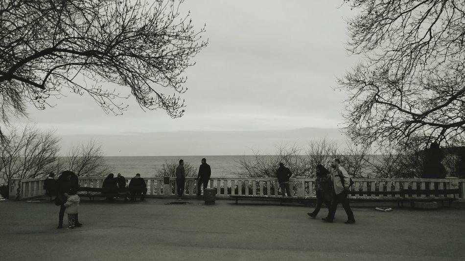 Monochrome life Monochrome People Silhouette Water Sky Beach Varna Bulgaria Sea Blacksea Horizon Over Water Black&white Life