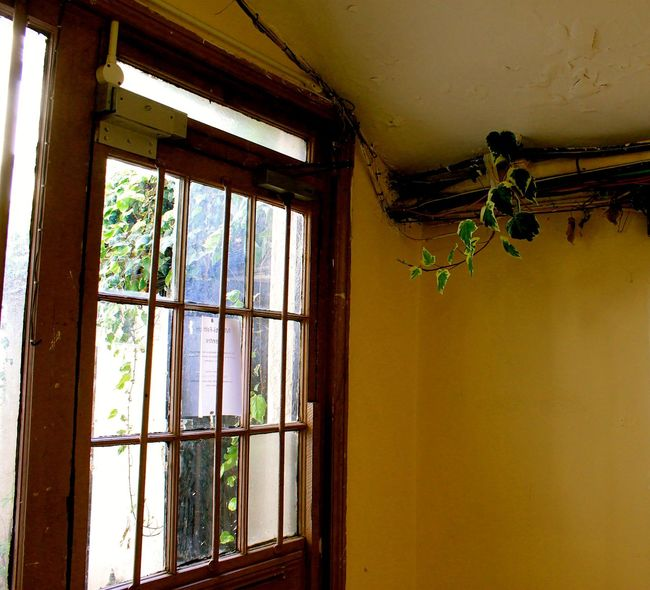 Architecture Built Structure Closed Day Deterioration Doors Indoors  Interior Nature No People Old Outdoors Window