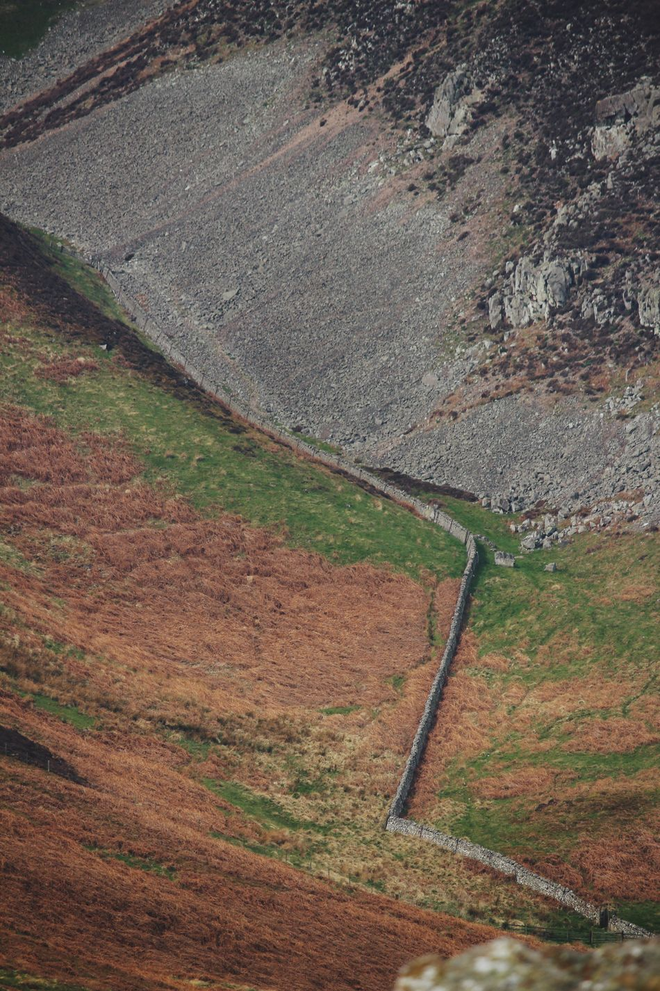 Zoom in Landscape High Angle View Nature Road No People Day Field Outdoors Scenics Tranquility Grass Beauty In Nature Mountain Drystonewall Farmland Northumberland National Park Geography Northumberland Hiking