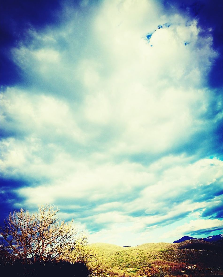 Cloud - Sky Sky Nature Dramatic Sky No People Tree Beauty In Nature Outdoors Storm Cloud Day Paradise Myparadise