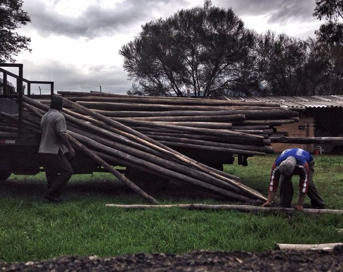Men unloading logs from truck in front of a shed Snapseed Logs Countryside Scene Ecuador Sangolquí Men At Work  Perfect Imperfection