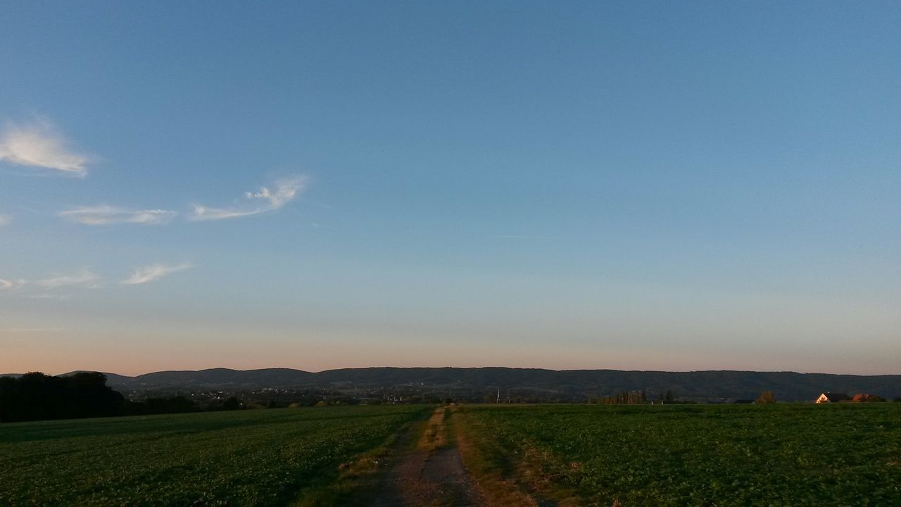 Field Landscape Sky Nature Sonnenuntergang Sky And Clouds Aussicht First Eyeem Photo Sunset Himmel Cloud - Sky Himmel Und Wolken Gras  Blue Sky Ausblicke Agriculture Growth Beauty In Nature No People