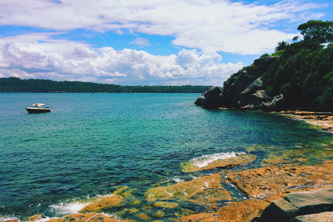 Beautiful stock photos of sydney, sea, water, beauty in nature, tree