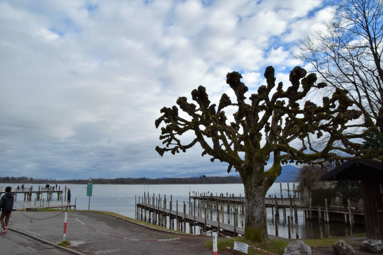 Beach Beauty In Nature Cloud - Sky Day Nature No People Outdoors Railing Sea Sky Tree Water