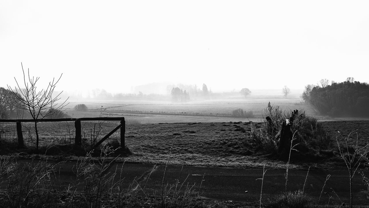 Wintertime Agriculture Bale  Beauty In Nature Black & White Clear Sky Day Farm Field Foggy Morning Grass Landscape Nature No People Outdoors Rural Scene Scenics Schleswig-Holstein Sky Tranquil Scene Tranquility Tree Wintertime