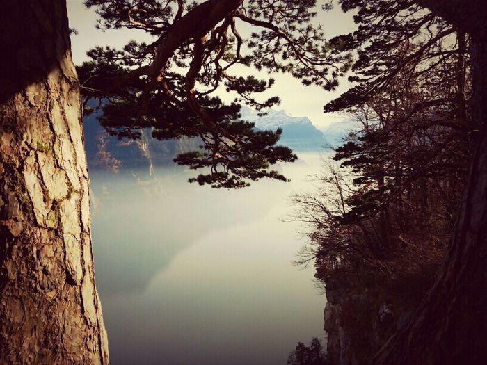 Sea, Switzerland, Fog,
