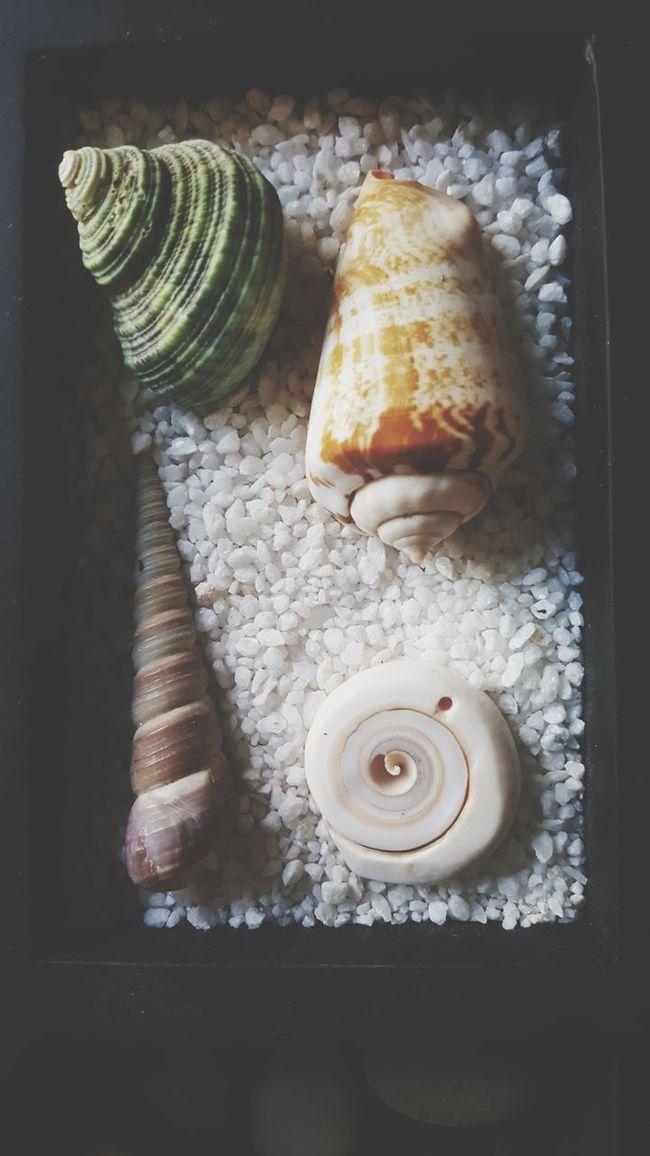 Shape Tranquility Shells Zen Zen Garden Colour Sand Grains Of Sand Positive Style Pattern Design Texture Natural Tumblr Tone Pattern, Texture, Shape And Form Sea Rock Stone Ocean Decor Circle Simple Form