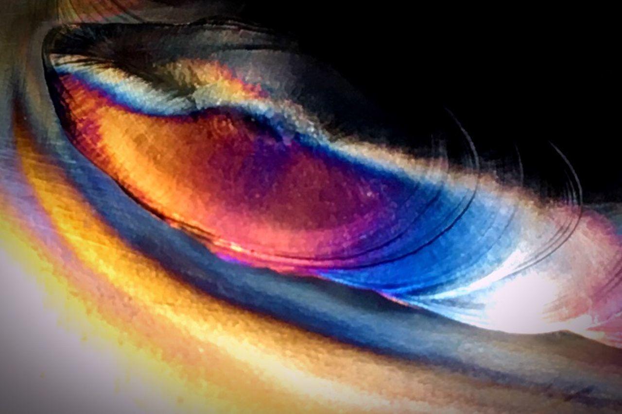 multi colored, full frame, close-up, no people, indoors, nature, eyesight, day, eyeball