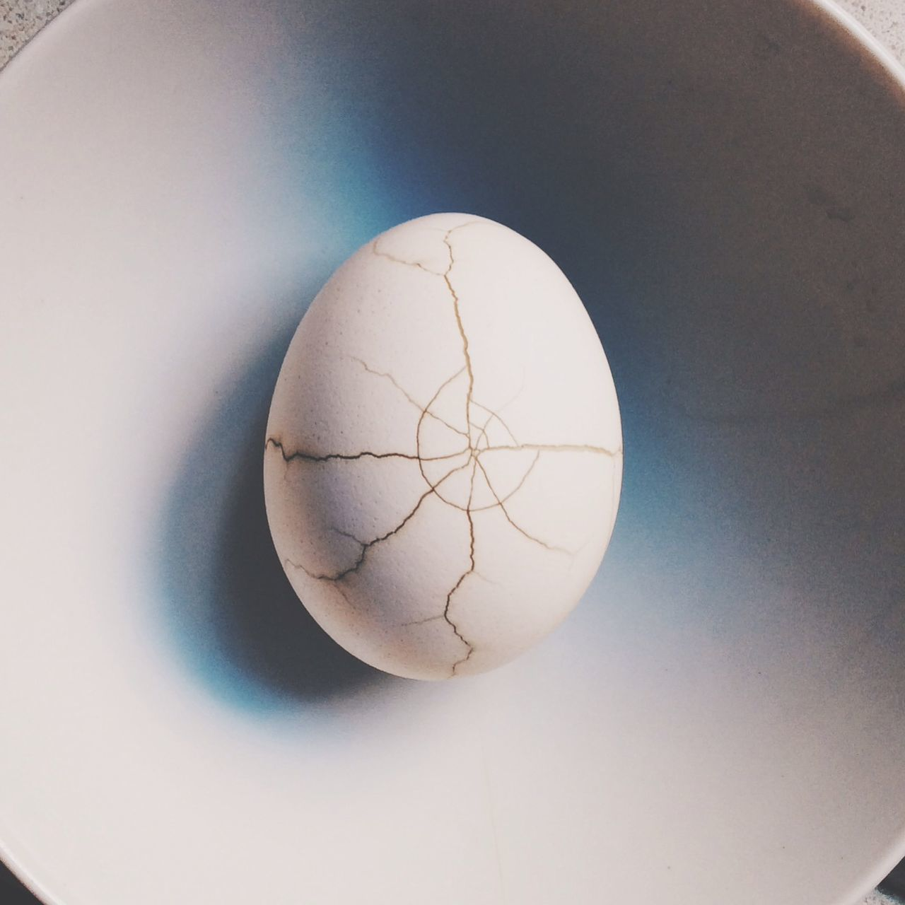 Beautiful stock photos of egg, Animal Egg, Beginnings, Broken, Close-up