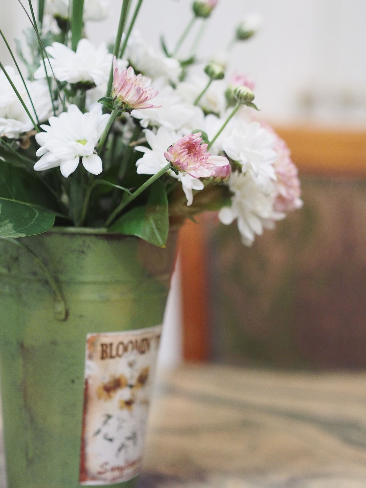 Flower No People Plant Vase Fragility Nature Growth Day Indoors  Close-up Freshness Flower Head Beauty In Nature