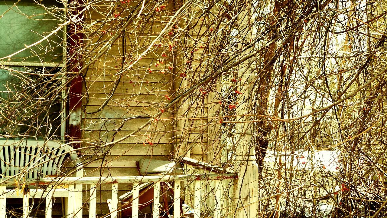 If Walls Could Talk Abandoned Pictures Tell More Then Stories OpenEdit In Last Century Architecture Nature Reclaims. Open Edit