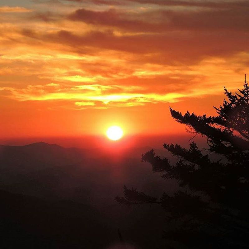 Sunset from Clingmans Dome in the Smoky Mountains. Unfiltered SansFilter Sunset SmokyMountains SmokyMountains Silhouette Spruce Evergreen Mountains Evening Hiking Nature Outdoors Nationalpark Tennessee