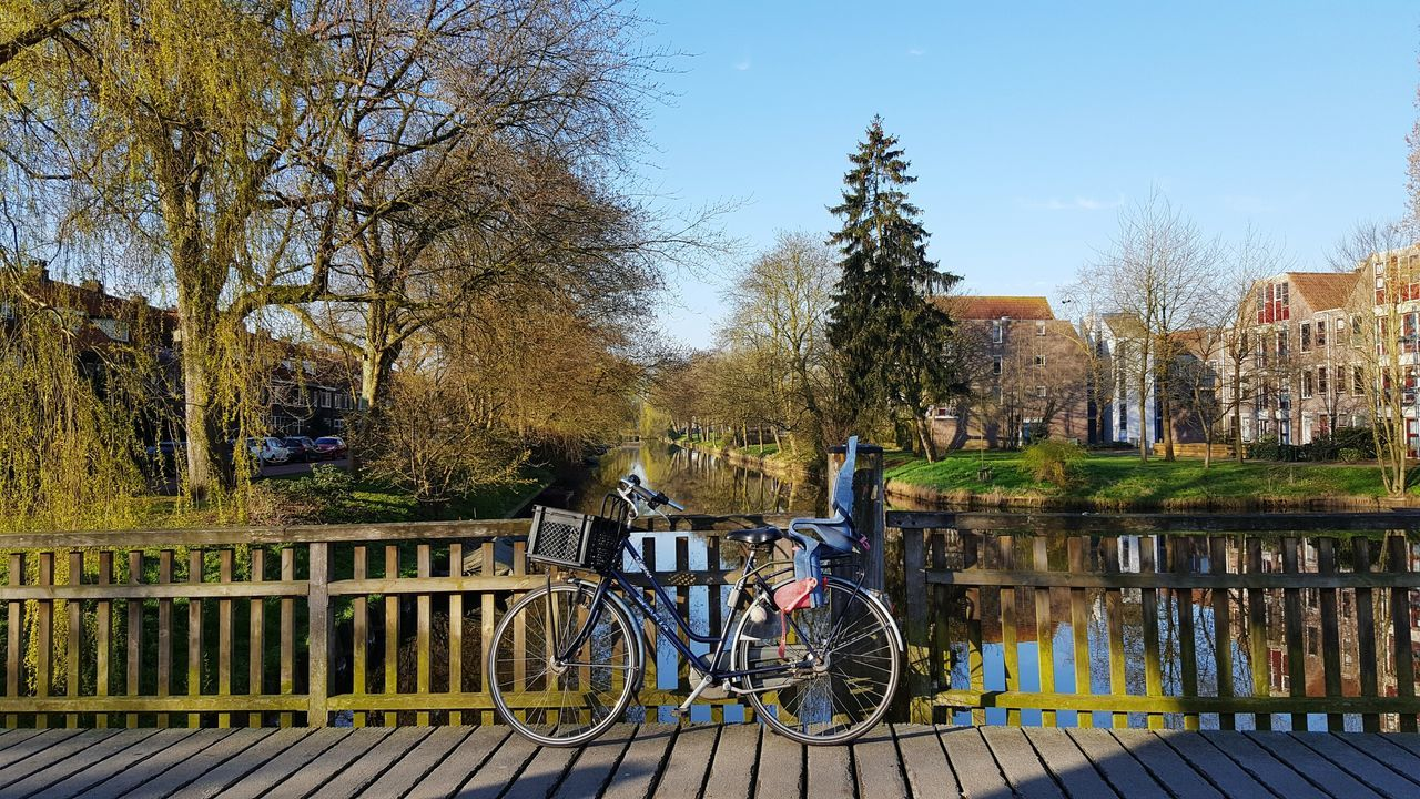Tree Sky Outdoors Day Real People Eyem Gallery TreePorn Bridge - Man Made Structure Bridge Water_collection Water Reflections Zwolle Nederland Bike Life Bike Bikeporn Tree Porn Nature Bikes Bike Ride Bikesaroundtheworld Bike Love EyEmNewHere Social Issues The Street Photographer - 2017 EyeEm Awards