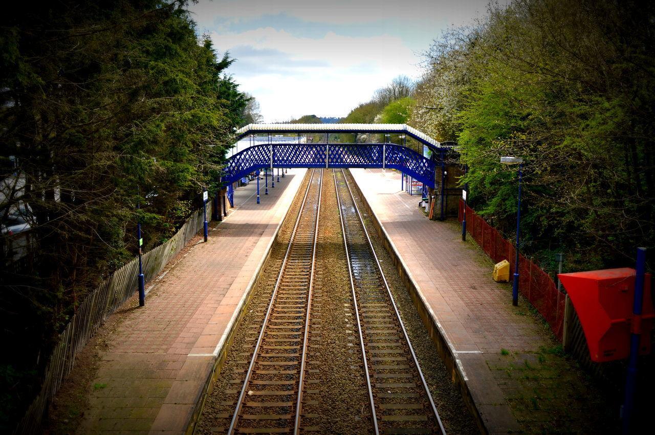 Blue Blue Bridge Bridge Britain Day England Growth No People Outdoors Railway Railway Track Sky The Way Forward Train Line Train Station Tree