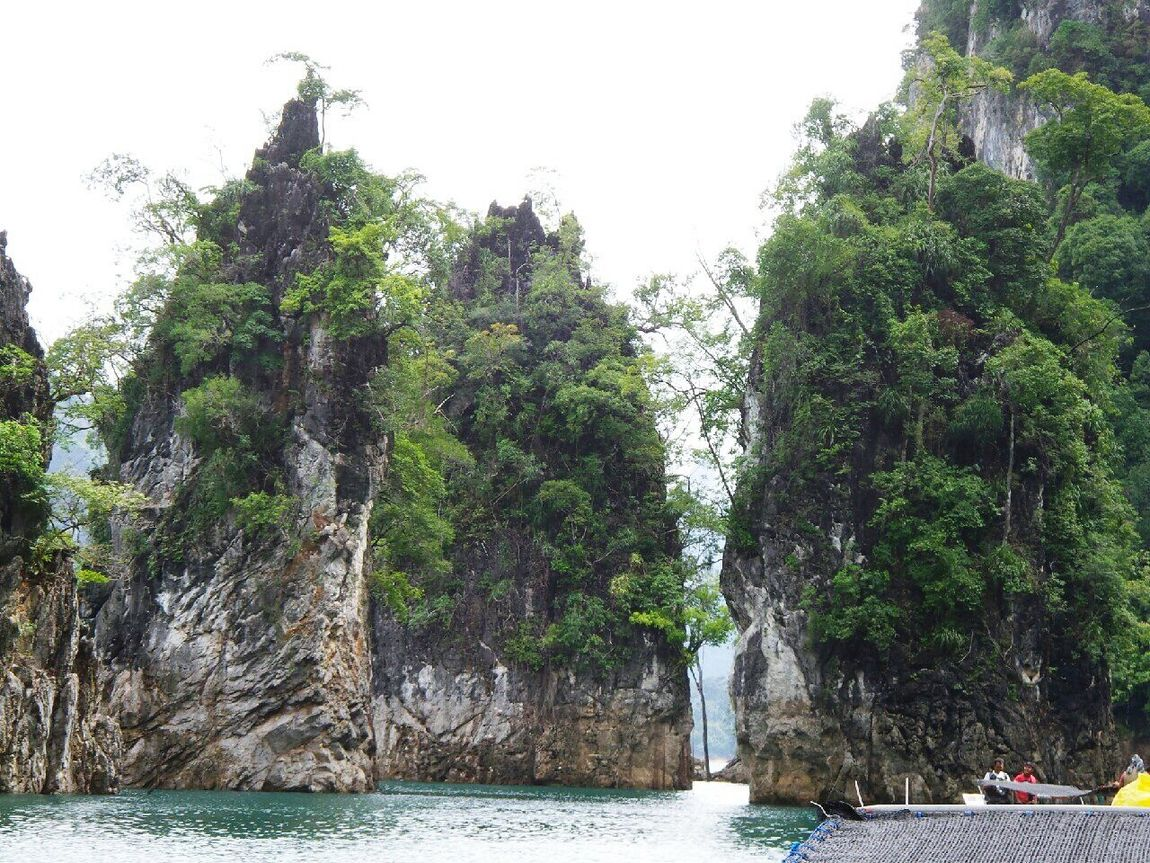 Relaxing Time Relaxing Ratchaprapa Dam Green Nature กุ้ยหลินเมืองไทย Tree Travel Moutain Lake Beauty In Nature Summer Water Day Tourism Vacation Thailand Travel Destinations Freshness Beauty Green Color