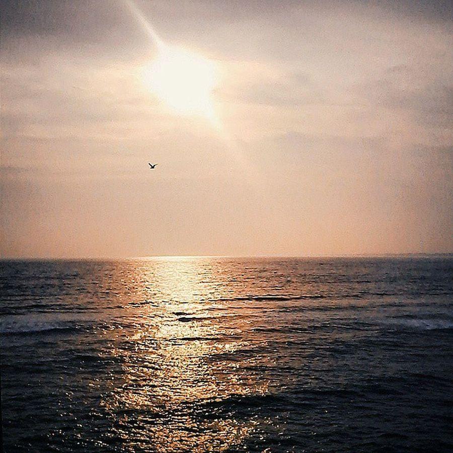 Barra de Guaratiba - RJ. 🌅📷 Vscocam 021rio Riosunset Instagood instamood beautiful sun pensive igers instadaily selfiesunday yolo love life awesome art nature photography beauty followme instaSize