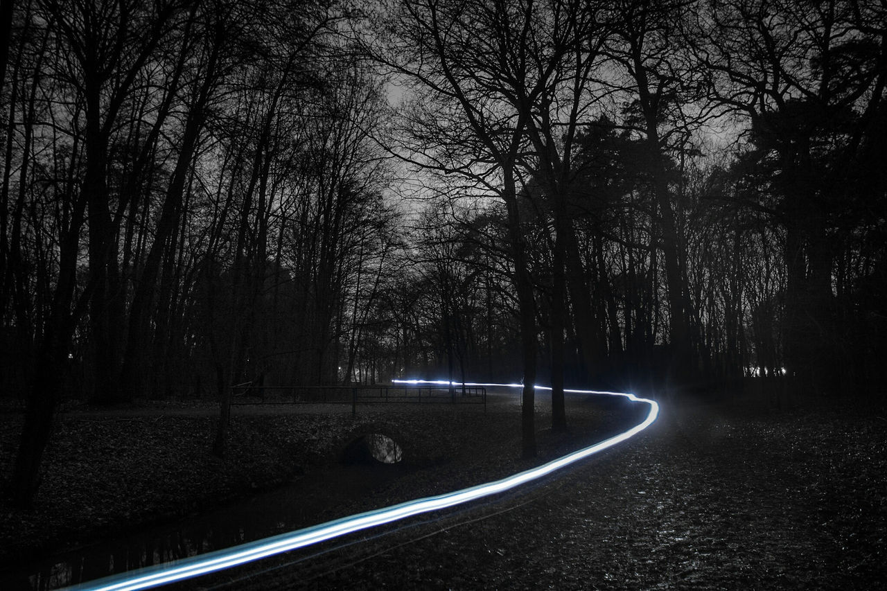 ~ 🚲🍃~ Tree Nature Forest Beauty In Nature Outdoors Water Sky Getting Inspired Light And Shadow Midnight Light Trails Canon Black & White Monochrome Night Lights Colorsplash Illuminated Night Light Trail Blurred Motion EyeEm Best Shots Single Light Source No People Long Exposure Nightphotography