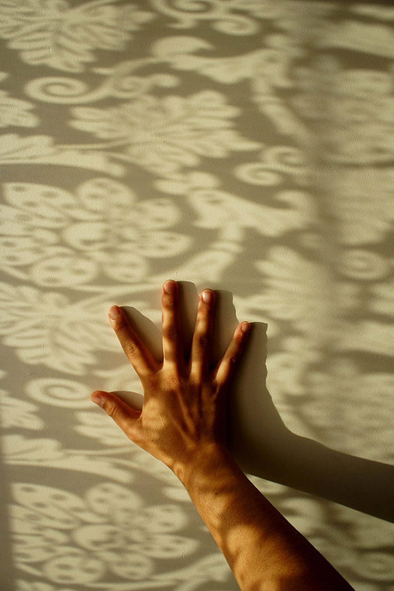 Person Part Of Silence Hand Stillness Mindful Mindfulness Awake Aware Personal Perspective Human Finger Reaching Day Tranquility Limb Feel Conected Tranquil Scene Human Skin Escapism EyeEm Best Shots EyeEm Gallery Eye4photography  Inner Peace TakeoverContrast
