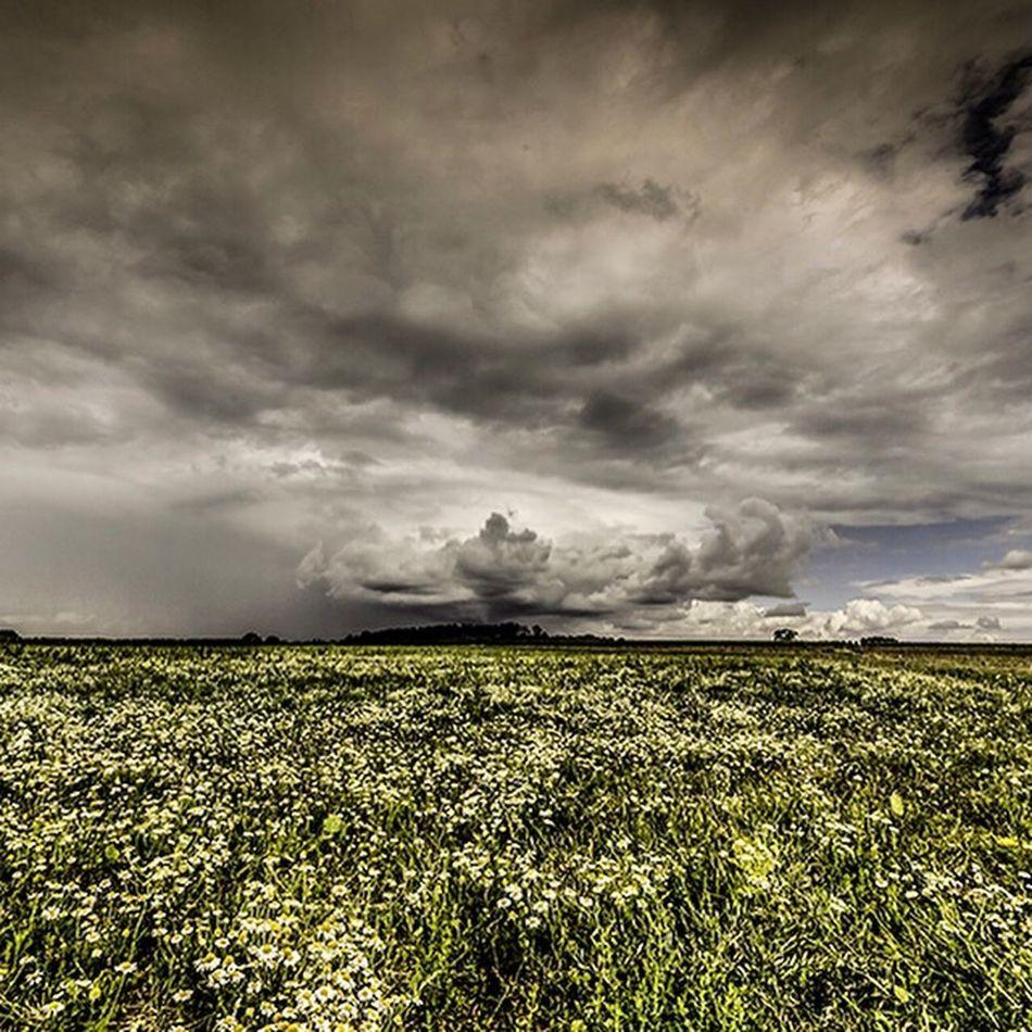 Journée d'orage