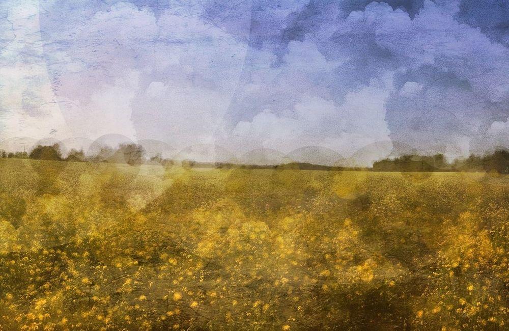 Summertime In Sweden EyeEm Best Edits NEM Painterly Dreamscapes & Memories