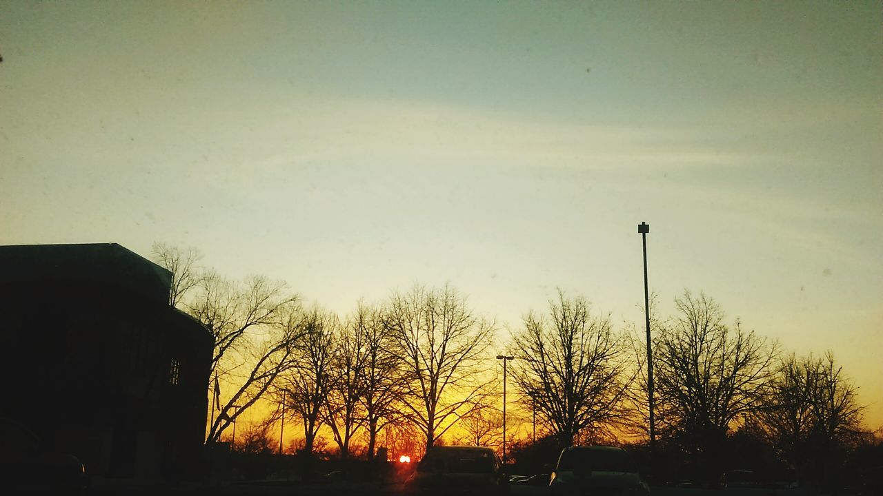 Sunset and late winter trees Negative Space Sunset Trees Urban Landscape Beautiful Skies