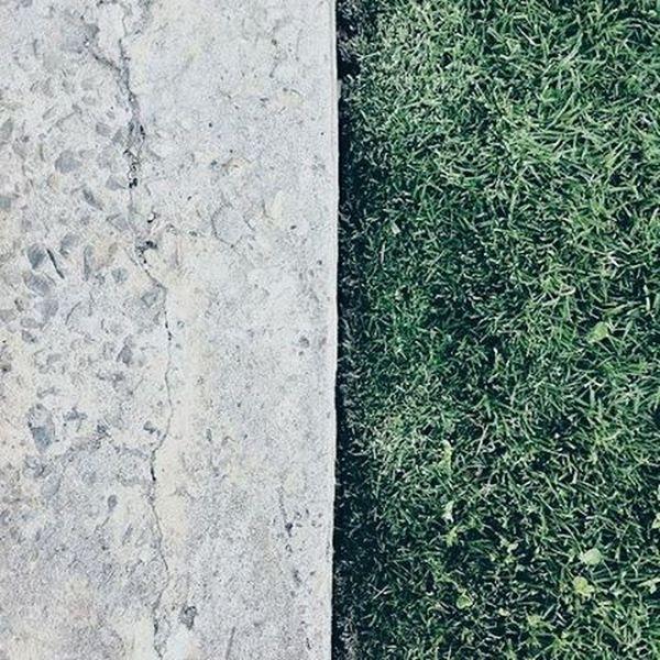 Two faced. Ground Grass VSCO Vscocam Vscofilter Vscogood Vscogreat Vscogreen Vscocool Vscophilippines Vscoallthetime