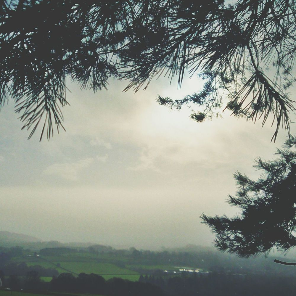 Lunchtime haze. Landscapes In Yorkshire Mistyfoggymilkymoody Hiking Trail Winterscapes