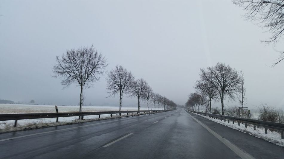 Tree Road Street Highway Cold Temperature Snow Snowing Outdoors Sky No People Landscape Nature Extreme Weather Day Taking Photos Hello World Allee Landstrasse Winter 2017