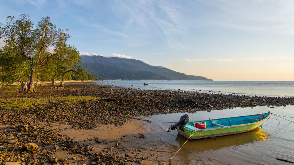 Adult Beach Beauty In Nature Day Green Boat Headland Landscape Mountain Nature Nature Reserve Outdoors People Scenics Sea Shore Line Sky Small Boat Tide Out Tied Up, Tioman Tioman Island Tree Tree Lined Water