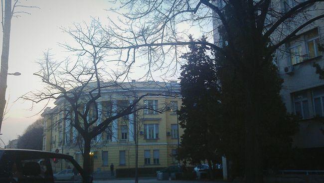 Architecture City Waiting Novisad Canyoufeelit Profession Hi! Amazing Relaxing Tree
