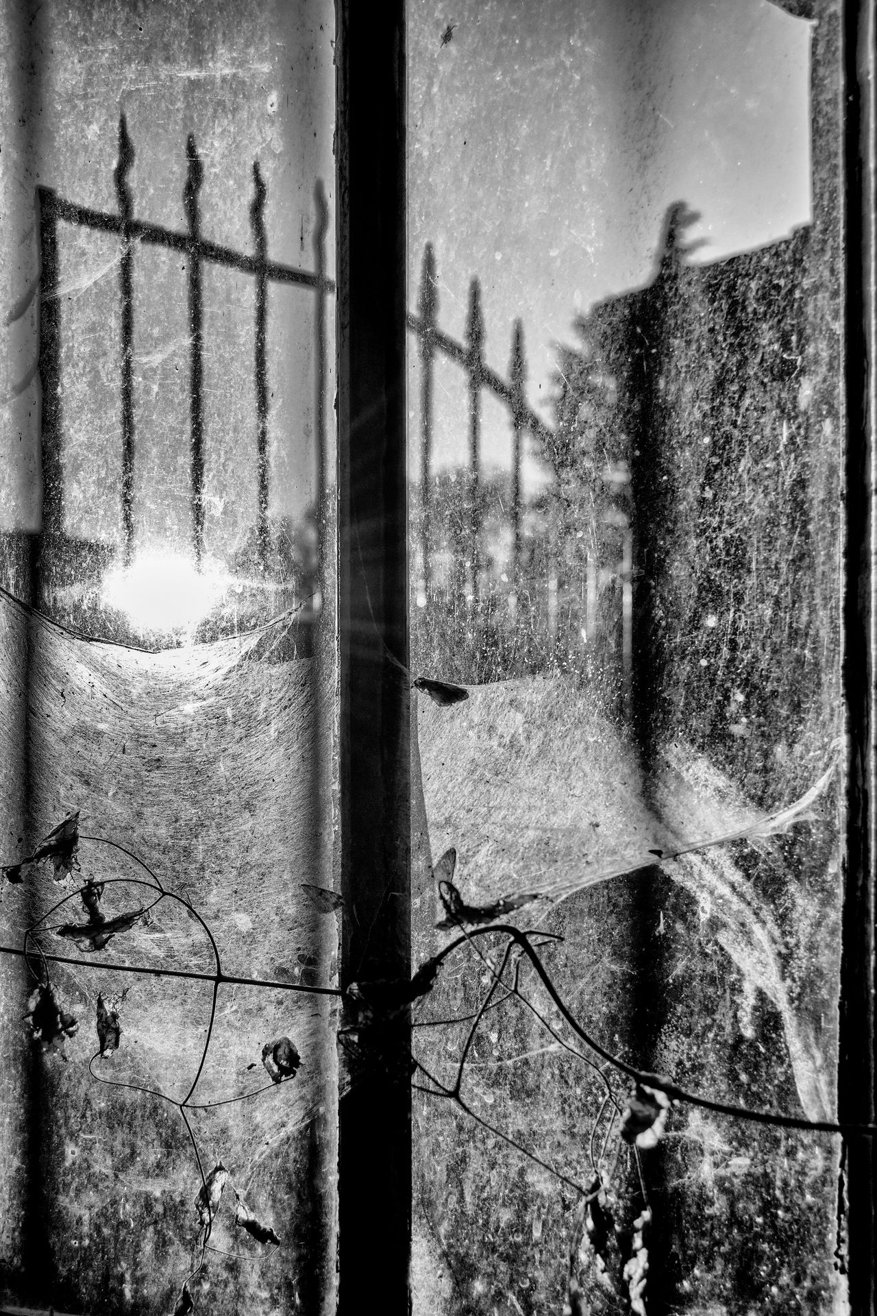 Window Looking Through Window Cobweb Cobwebs Spider Web Abandoned Abandoned Places Winter_collection Nsnfotografie Wintertime Urbexphotography Beauty Of Decay Blackandwhite Black And White Bw_collection Urbex sunset #sun #clouds #skylovers #sky #nature #beautifulinnature #naturalbeauty Sunset