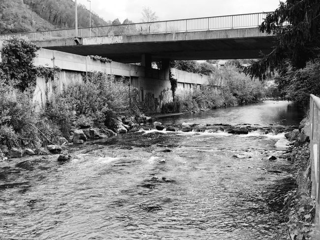 Liestal EyeEm Diversity Blackandwhite Connection Architecture Built Structure Day Plant River Water No People Outdoors Nature Growth Footbridge Clear Sky Tree Sky EyeEmNewHere
