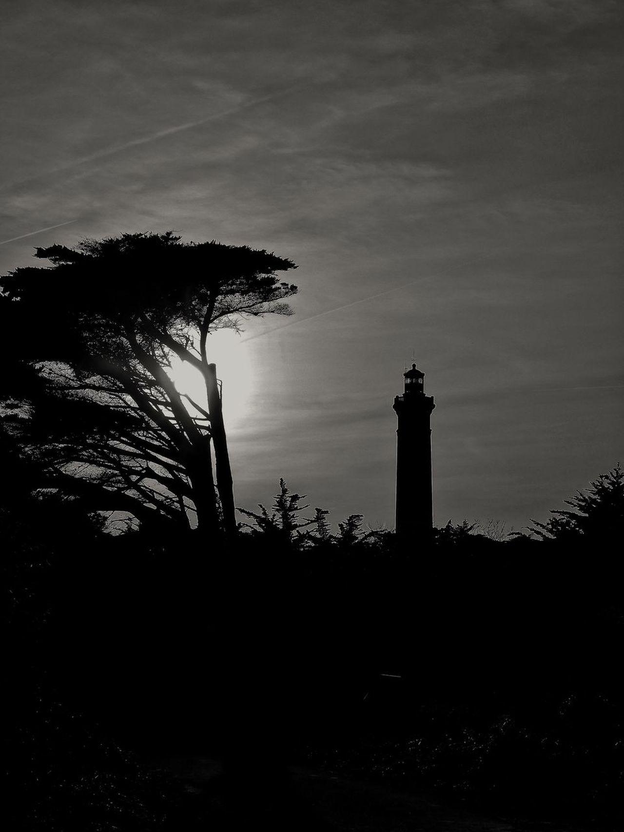 Blackandwhite Ile De Ré Saint Clément Des Baleines Phare Des Baleines Lighthouse No People Tree Nature Lighthouse Sky Silhouette Architecture Outdoors Beauty In Nature Day
