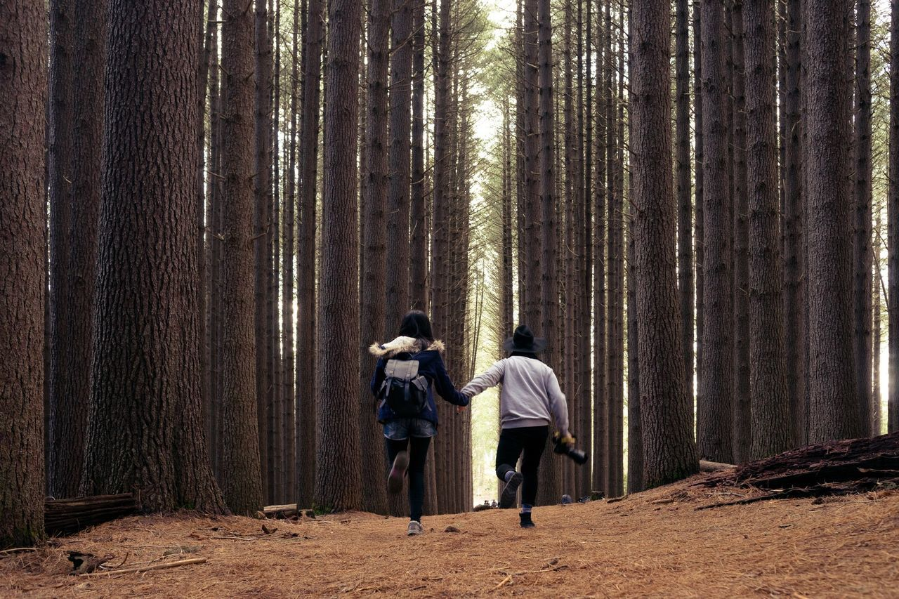 Rear View Of People Running Against Trees In Forest