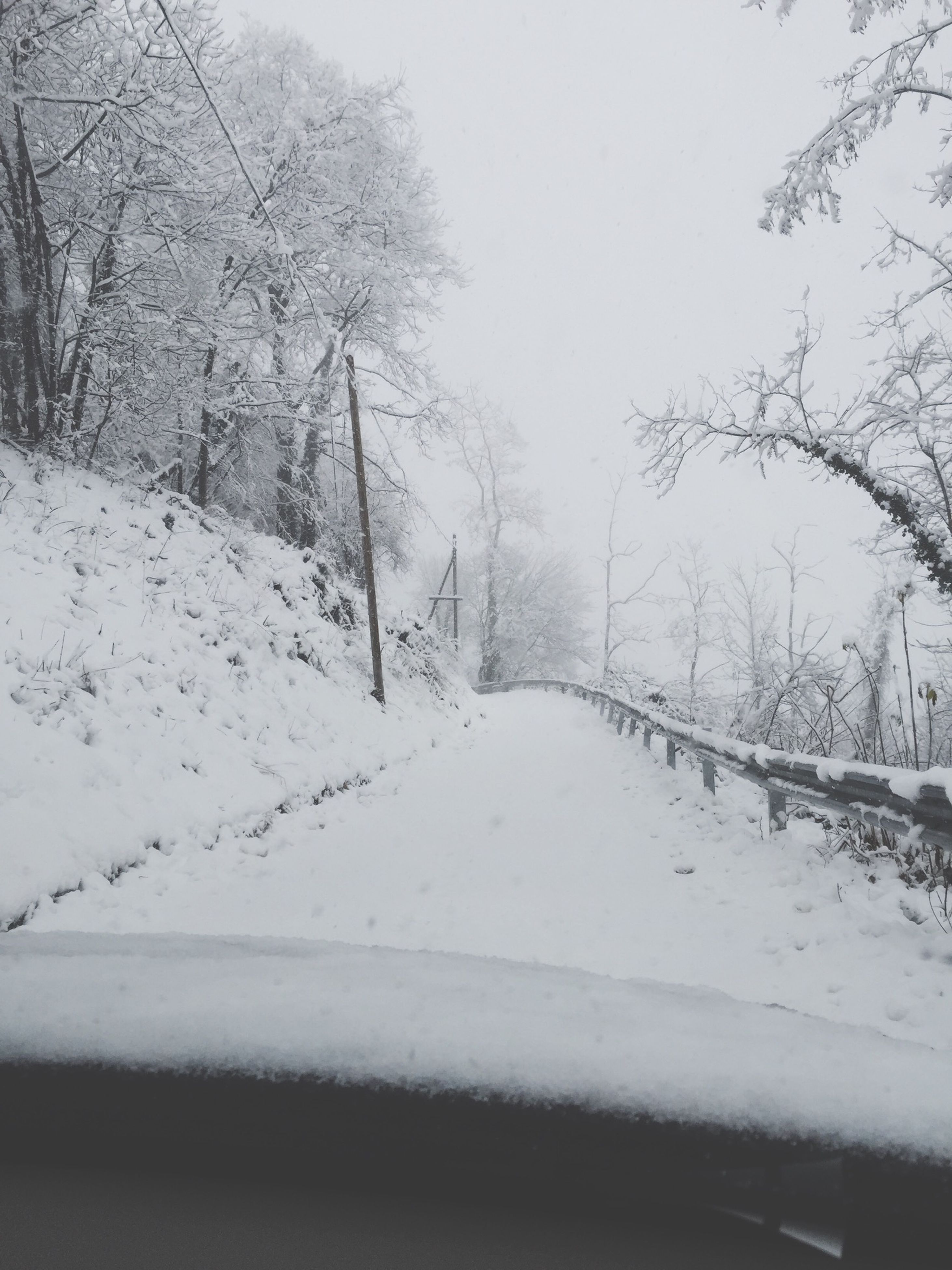 snow, winter, cold temperature, season, weather, transportation, tree, the way forward, road, covering, nature, frozen, bare tree, white color, clear sky, tranquility, tranquil scene, diminishing perspective, beauty in nature, vanishing point