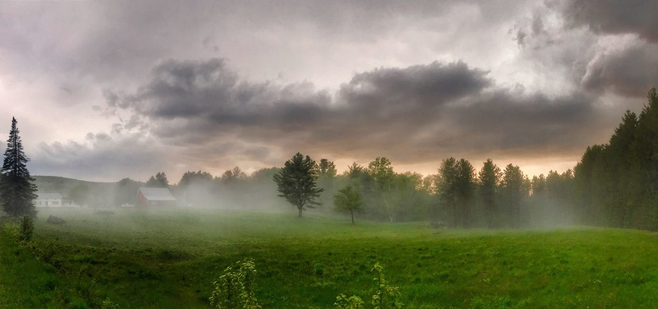Nature Beauty In Nature Landscape Tranquility Idyllic Rural Scene No People Hazy  Fog Vermont