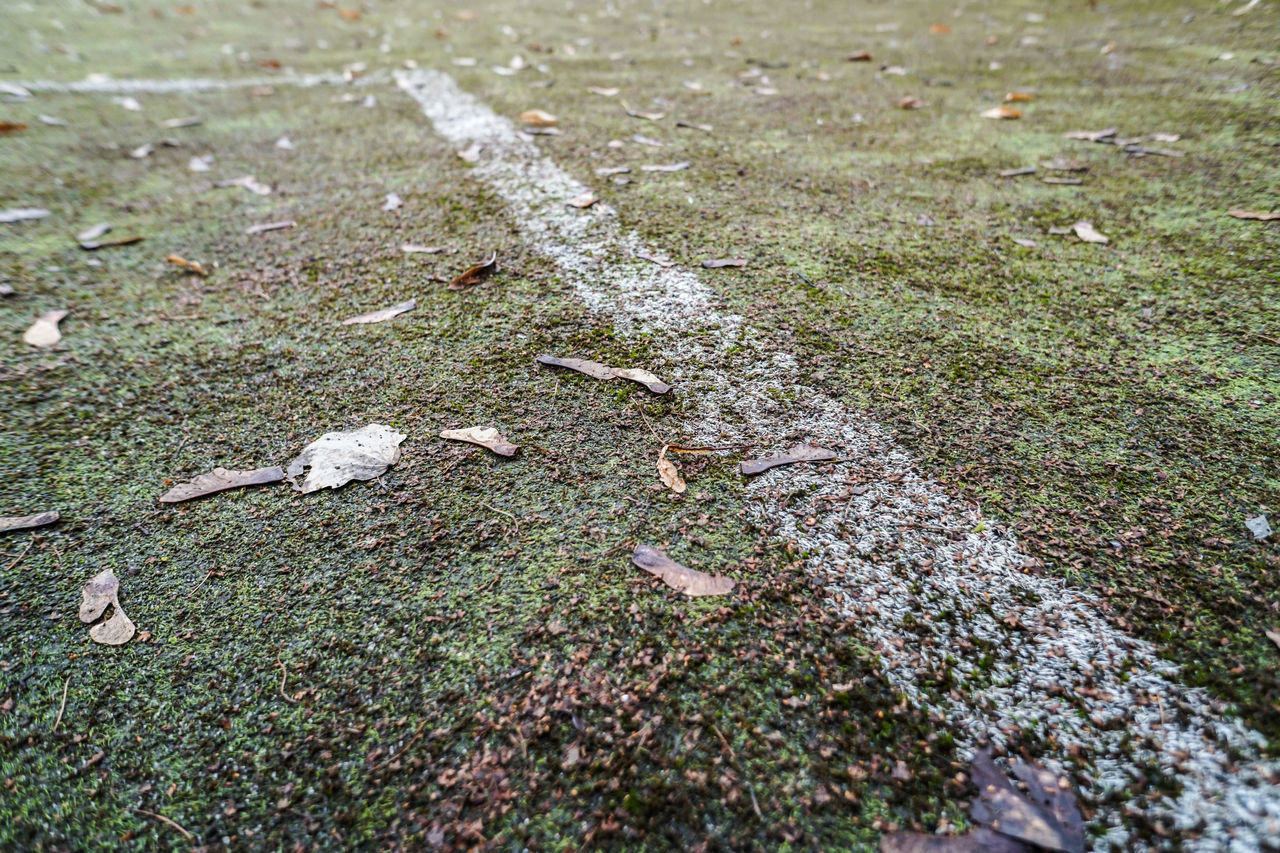Neglected / shabby / worn synthetic grass football - soccer pitch / stadium surface with leaves and dirt, white line Abandoned Artificial Baseball Dirty Field Football Goal Leaves LINE Neglected No Care Pitch Play Season  Shabby Soccer Soccer Field Sports Stadium Surface Synthetic Synthetic Grass Turf White Line Worn