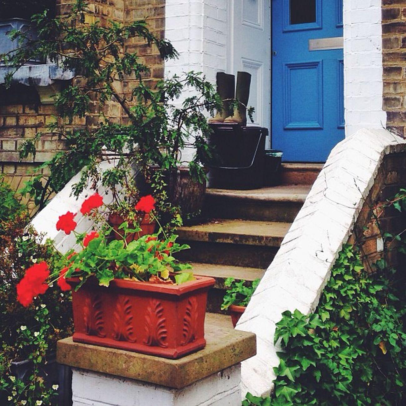Lovely House in #Hampstead ☀️?????#alan_in_london #gf_uk #gang_family #igers_london #insta_london #london_only #thisislondon #from_city #ic_cities_london #ig_england #love_london #gi_uk #ig_london #londonpop #allshots_ #aauk #mashpics #pro_shooters #cap Love_london Ic_cities_london Ig_london Aauk Gang_family Capture_today Londonpop Loveyoursummer Allshots_ Mashpics London_only Top_masters Hampstead  From_city Gf_uk Pro_shooters Alan_in_london Insta_london Thisislondon Gi_uk Igers_london Ig_england