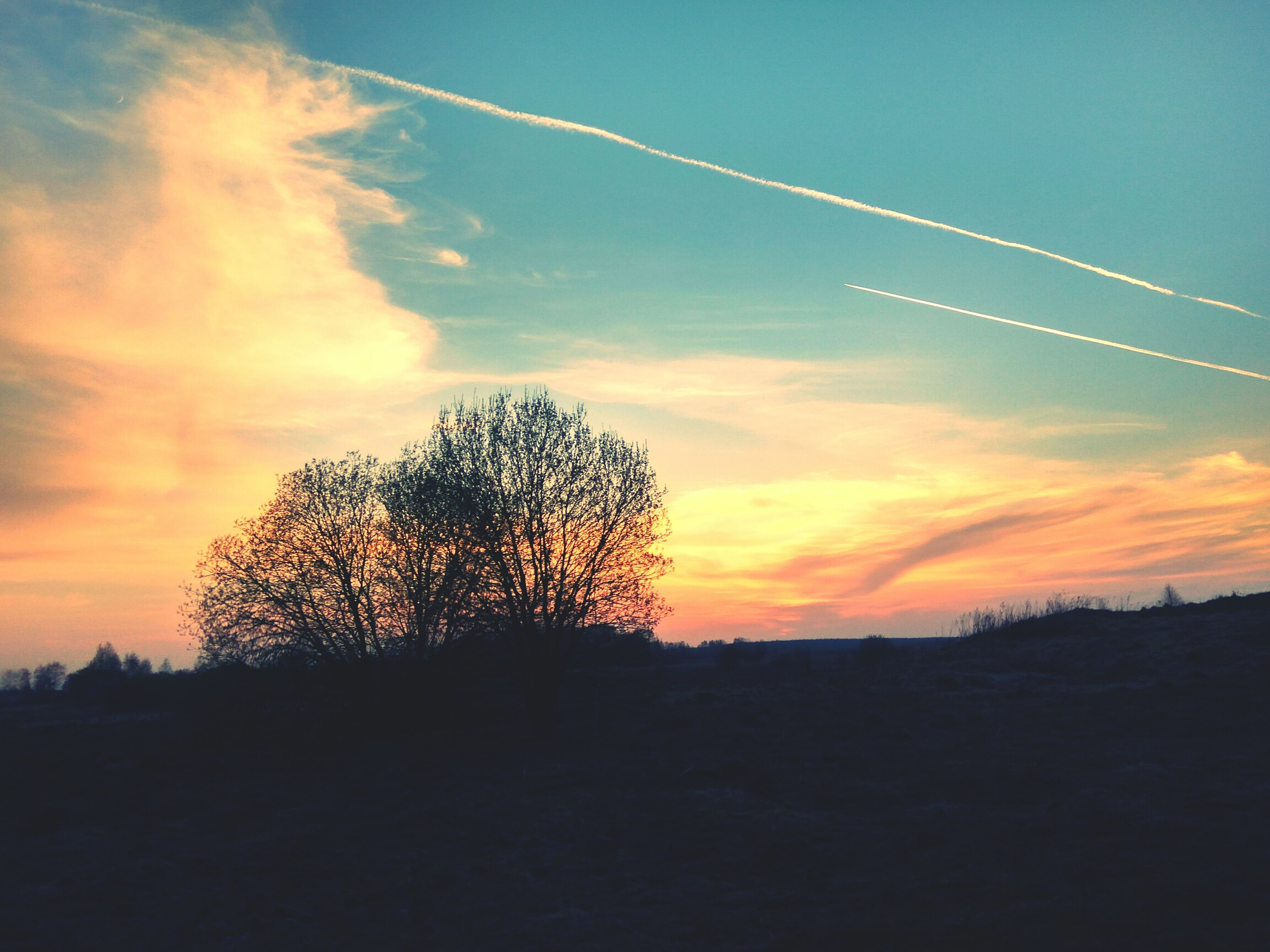 sunset, silhouette, beauty in nature, sky, nature, vapor trail, scenics, landscape, tree, tranquility, tranquil scene, no people, bare tree, outdoors, contrail, day