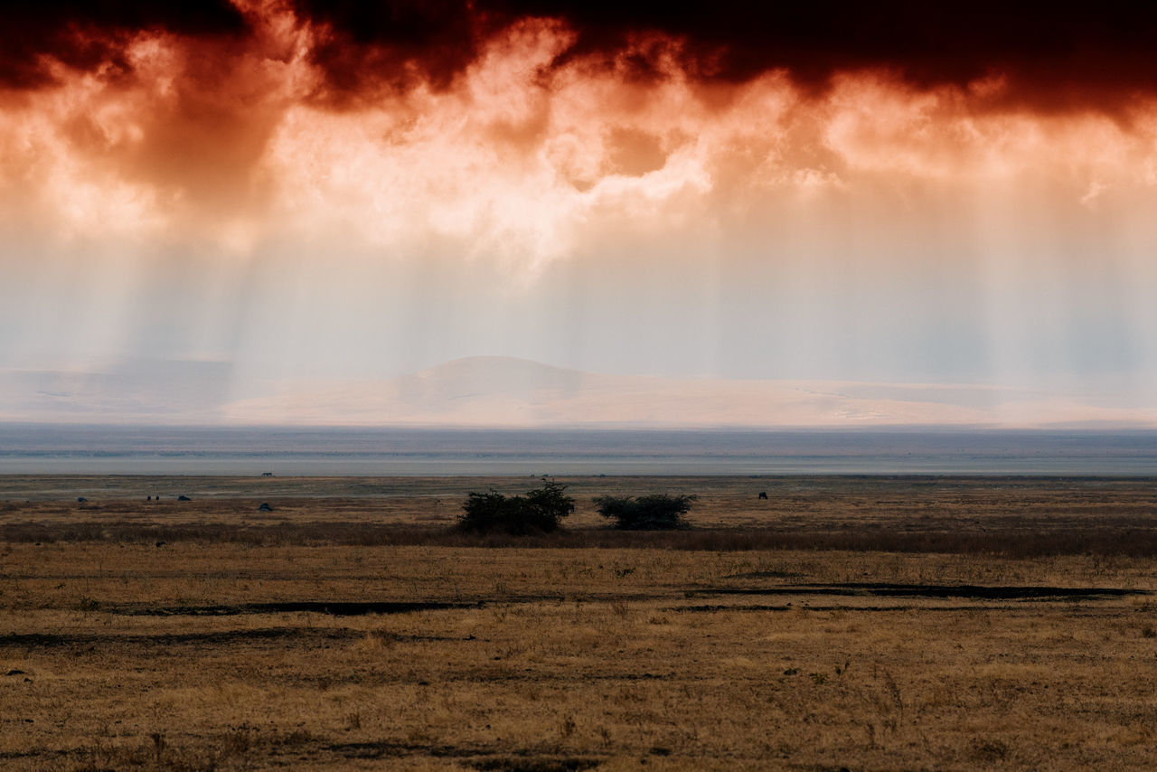 Arusha Astronomy Beach Beauty In Nature Cloud - Sky Day Dramatic Sky Horizontal Landscape Nature Ngorongoro Ngorongoro Crater No People Outdoors Safari Scenics Serengeti Serengeti National Park Sky Tanzania Tranquility Water Wildlife