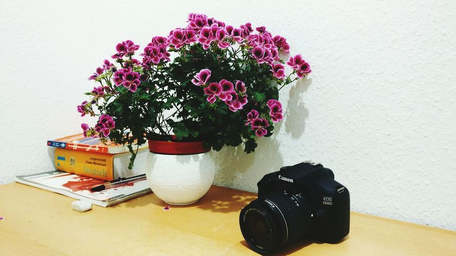 Flowers Camera Cannon Wörterbuch Dictionary Table Indoors  No People Day