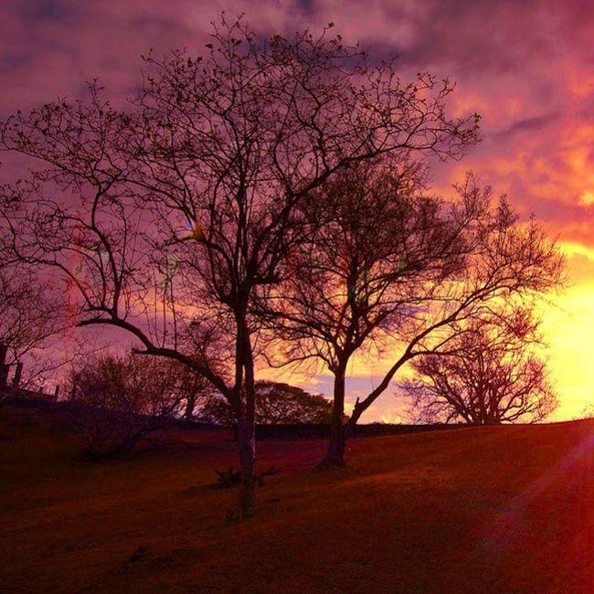 Ig_grenada PureGrenada Sunset_in_bl Sunsets_sxmrrcadz Sunsets_ng Sunsetsareonme Sunset_madness Sunset Grenada WORLD_BESTSKY Westindies_landscape Ig_caribbean Amazingphotohunter Andyjohnsonphotography Nature_sultans
