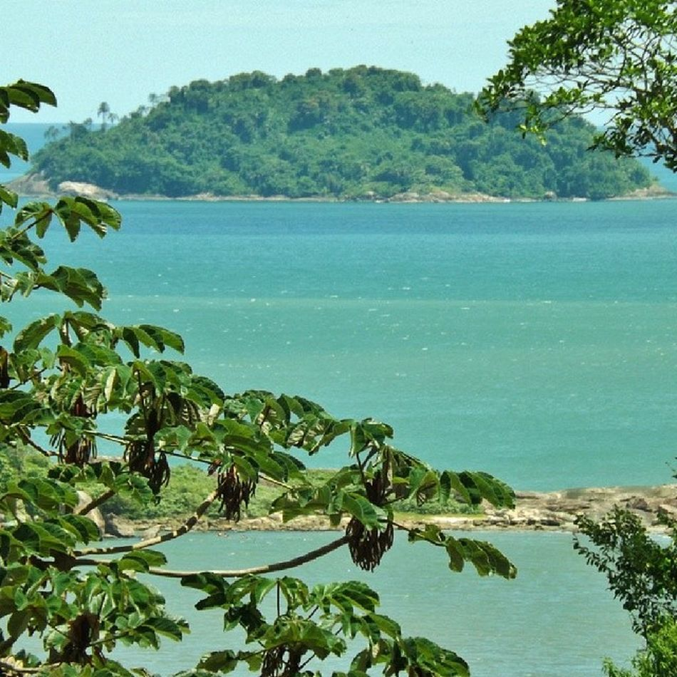 Ilha do Guarau Peruíbe SP Brasil Nature EyeEm The Best Shots My City