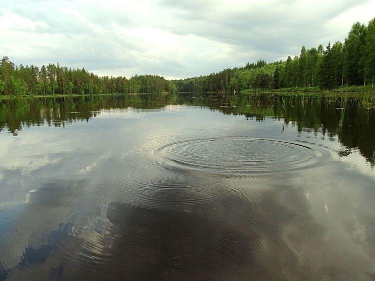 Waves Of Summer! Summer2015 Sweden Ludvika Nature_collection