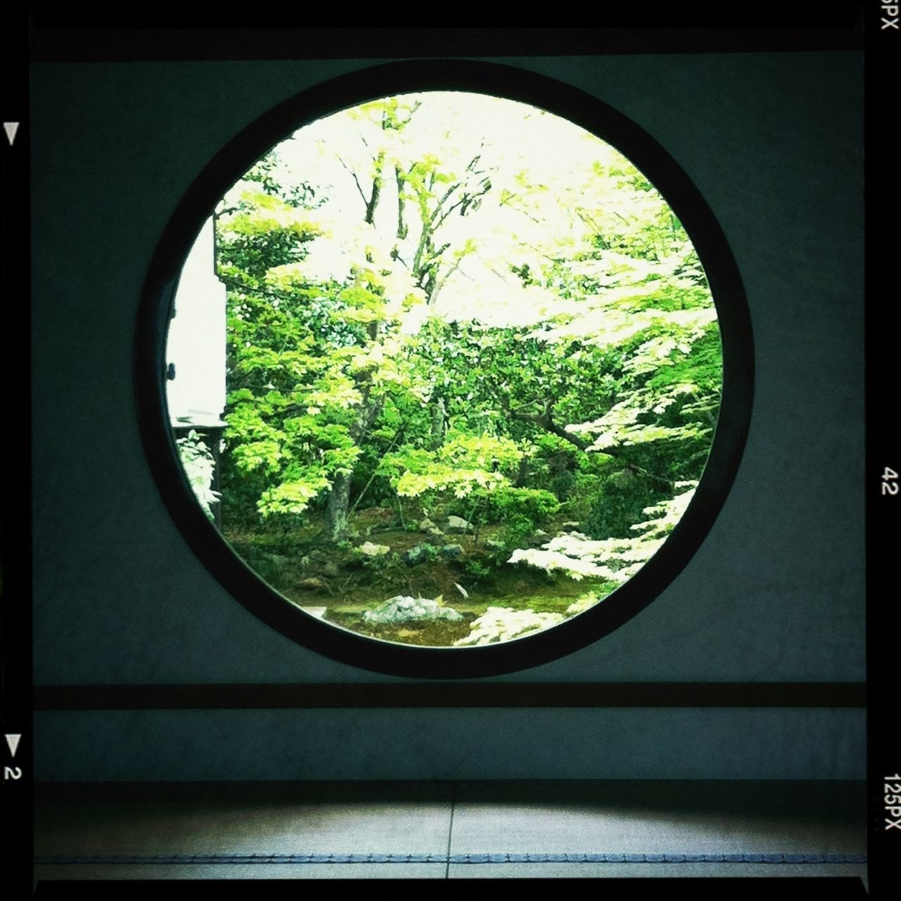 window, indoors, circle, day, no people, built structure, tree, close-up, sky, architecture, nature