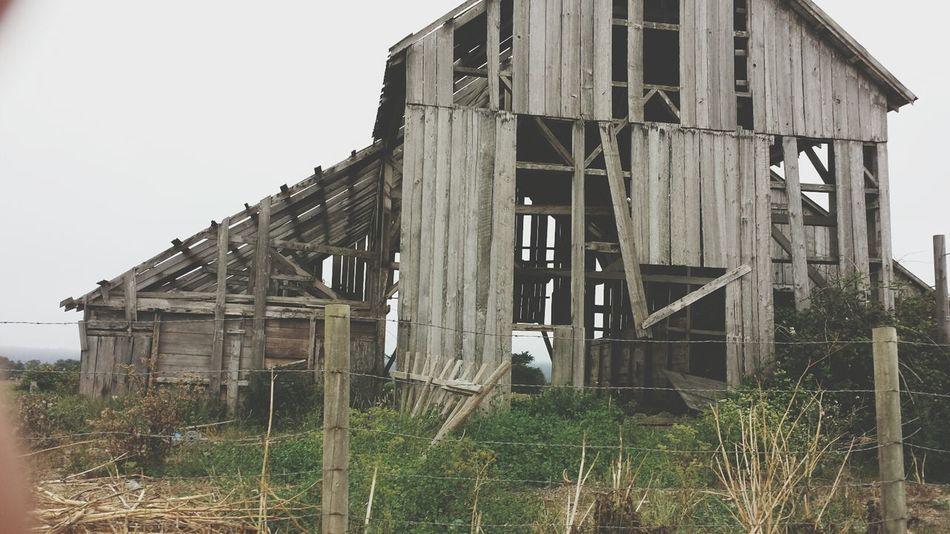 Art Adventure_time Nature Abandoned Buildings