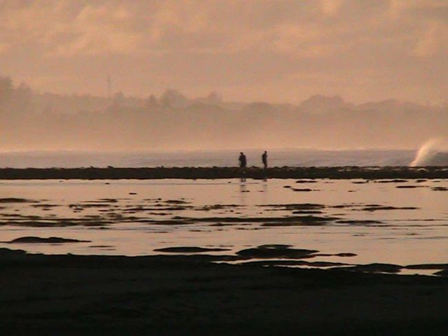 Coral Reefs Early Morning Walk... Seascape Photography Shallow Water Low Tide Before Sunrise People Walking  Calmness Taking Photos Pebbles And Stones Nella's Photographic World