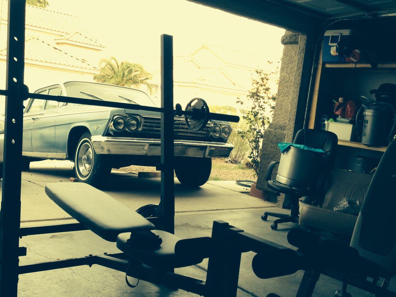 64 Impala Chilling Exercise