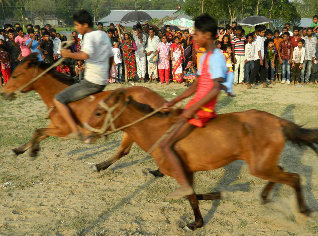 Celebration Cultural Programs Culture Domestic Animals Fun Gathering Happiness Horse Horse Race Joy People Pohela Boishakh Race Running