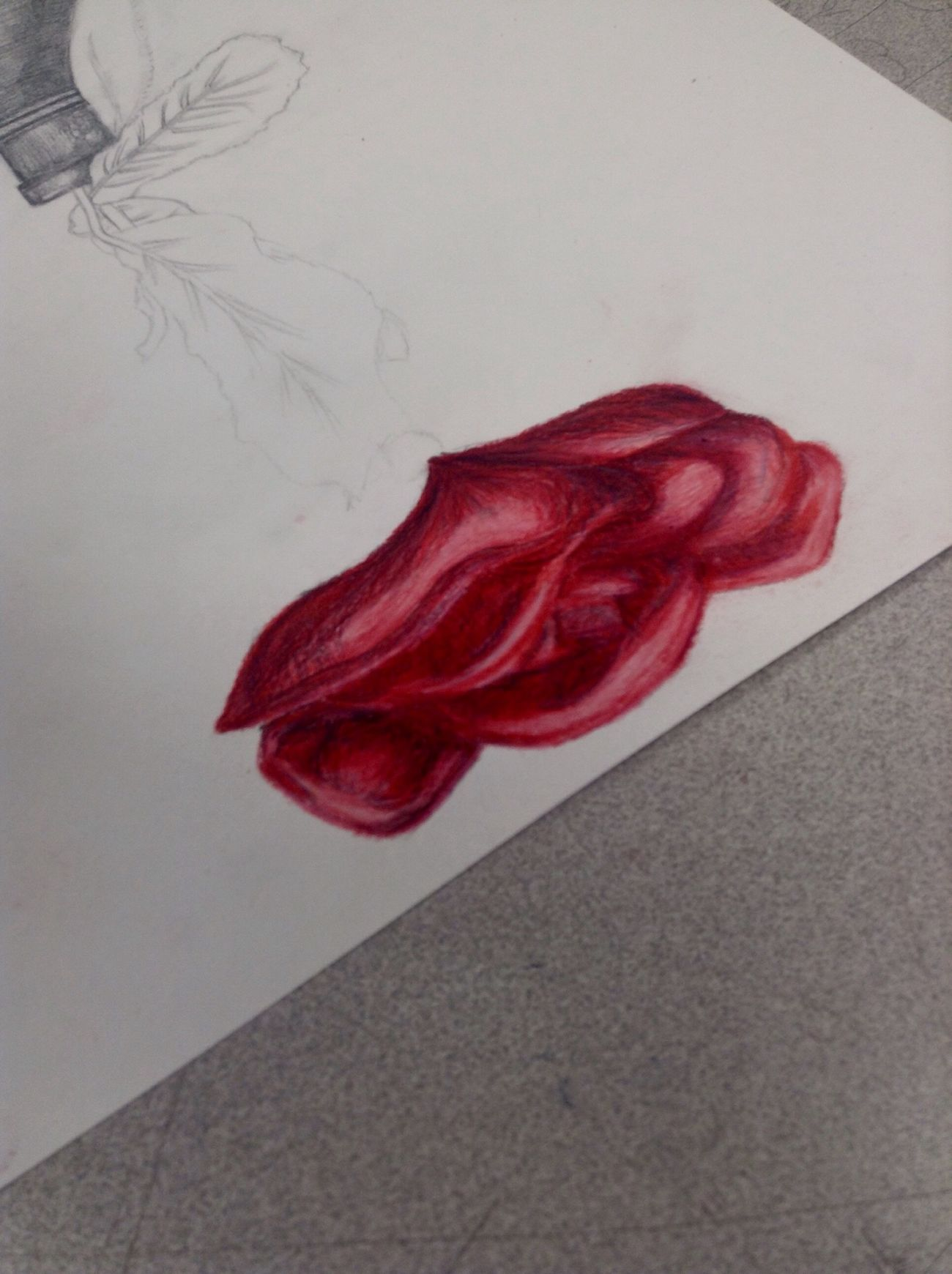 Working on another rose~ Doodle Sketch Drawing Colored Pencil School Red Rosé Opéra Black Ribbon Value